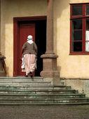 ストックホルム skansen で女性 — ストック写真