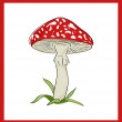 Fly agaric (death cup), vector illustration — Imagen vectorial