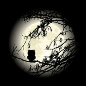 Lonely owl sitting on the tree in night, vector — Vecteur
