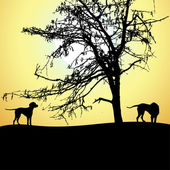 Silhouette of two dogs at sunset, vector — 图库矢量图片