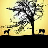 Silueta de dos perros en el atardecer, vector — Vector de stock