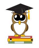 かわいい漫画フクロウ身に着けている学術キャップ、ベクトル — ストックベクタ