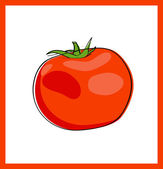 Fresh red tomato, vector — Stock Vector