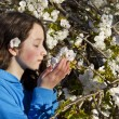 Young Girl smelling Cherry Blossoms — Stock Photo