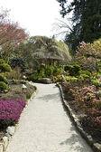 Leden till stugan i japanska trädgården — Stockfoto