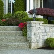 Stock Photo: Front Yard Steps to Home