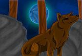 Wolf onder blue moon — Stockfoto
