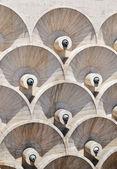 Círculos abstratos — Foto Stock