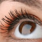 Brown eye closeup — Stock Photo