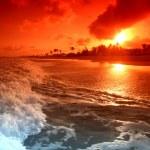 Ocean sunrice — Stock Photo #10097436