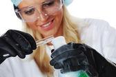 化学实验 — 图库照片