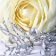 White rose — Stock Photo #10645637