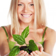 Plant in blonde hands — Stock Photo