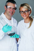 Cheerful chemistry researchers — Stock Photo