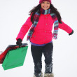 Winter shopping — Stock Photo #8079524