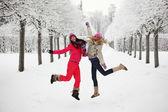 Winter walking — Stock Photo
