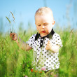 jongen in gras — Stockfoto #8564504