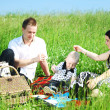 Happy family picnic — Stock Photo #8564813
