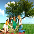 Girlfriends on picnic — Foto Stock