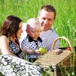 Family picnic — Stock Photo #8566079