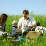 Family picnic — Stock Photo #8566145