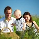 Family picnic — Stock Photo #8566175