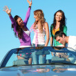 Royalty-Free Stock Photo: Friends in car