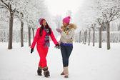 Zimowe wędrowanie — Zdjęcie stockowe
