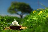 Natuurlijke thee — Stockfoto
