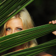 Woman behind the palm leaves — Stock Photo