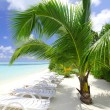 Tropical island — Stock Photo #8708409