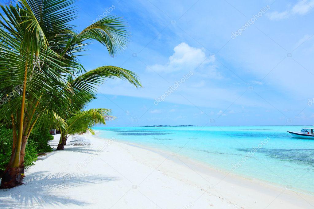 Tropical Island Vacations: Stock Photo © Yellow2j #8708262