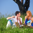 Picnic — Stock Photo #8941730