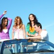 Stock Photo: Friends in car