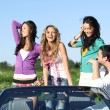 Friends in car — Stock Photo #8941946