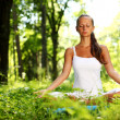 o nascer do sol do Lotus yoga — Foto Stock