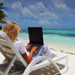 Stock Photo: Tropical business woman with laptop