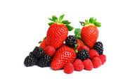 大莓果桩 — 图库照片