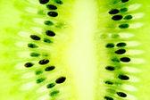 Kiwi slice — Stock Photo