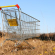 Go shoping cart — Stock Photo
