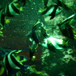 Fish in aquarium — Stock Photo #9989894