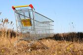 Go shoping cart — Stock Photo
