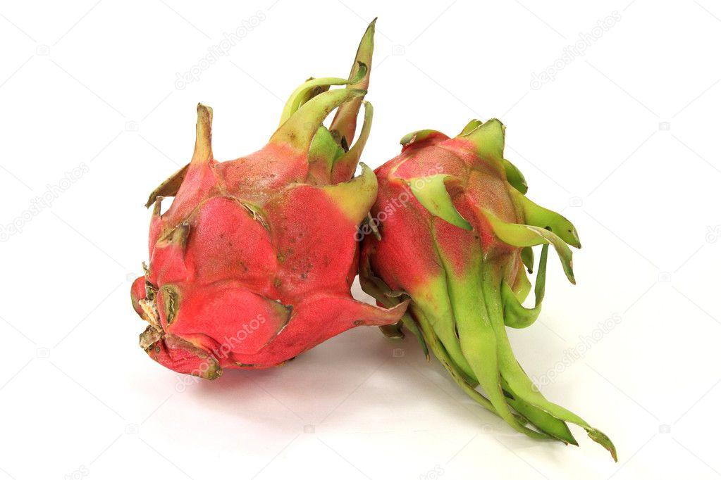 Pitahaya Dragon Fruit as Pitaya And Dragon Fruit