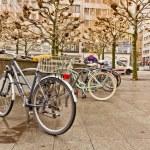 Bikes on a rack — Stock Photo