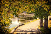 The walkway by the pond — Stock Photo