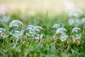Soap-bubbles — Stock Photo