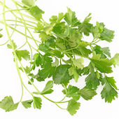 Parsley isolated on white background — Stock Photo