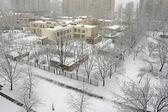 Hazy winter morning with hoary trees and house — Stock Photo