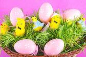 Krásné velikonoční košík s kuře a zdobené — Stock fotografie