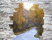 Estrada entre árvores amarelas em uma janela atrás de um muro de pedra de torção — Fotografia Stock